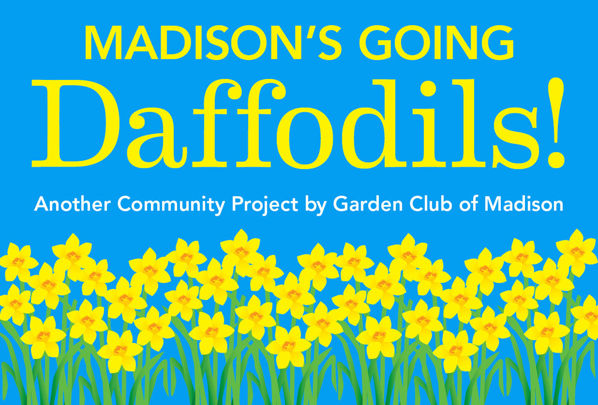 Daffodils_CommunityProjects_1212x820